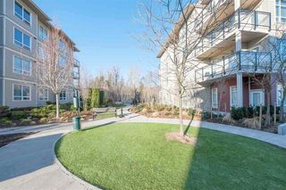 """Photo 13: D201 20211 66 Avenue in Langley: Willoughby Heights Condo for sale in """"ELEMENTS"""" : MLS®# R2359216"""