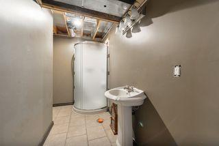 Photo 25: 13 DOUGLAS Crescent: Leduc House for sale : MLS®# E4165062