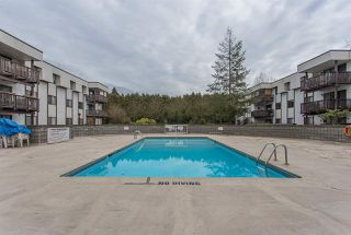"""Photo 18: 301 12170 222 Street in Maple Ridge: West Central Condo for sale in """"WILDWOOD TERRACE"""" : MLS®# R2395096"""