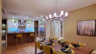 Photo 41: 381 MEADOWVIEW Drive: Fort Saskatchewan House for sale : MLS®# E4207656