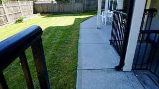 Photo 36: 5958 151 Street in Surrey: Sullivan Station House for sale : MLS®# R2490671