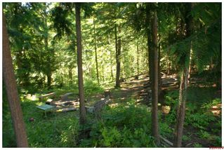 Photo 29: 7280 SE Black Road in Salmon Arm: Ranchero Residential Detached for sale : MLS®# 10050630