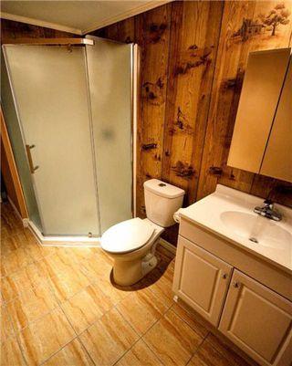 Photo 6: 64 Beaucourt Road in Hamilton: Ainslie Wood House (Bungalow) for sale : MLS®# X3513954