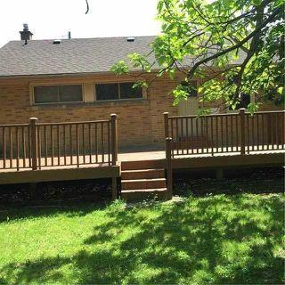 Photo 10: 64 Beaucourt Road in Hamilton: Ainslie Wood House (Bungalow) for sale : MLS®# X3513954