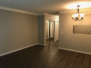 """Photo 5: 206 8680 FREMLIN Street in Vancouver: Marpole Condo for sale in """"COLONIAL ARMS"""" (Vancouver West)  : MLS®# R2114402"""