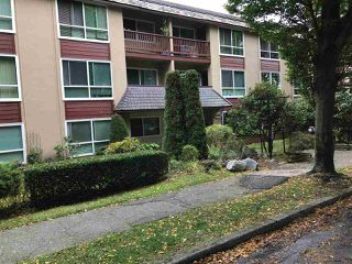 """Photo 1: 206 8680 FREMLIN Street in Vancouver: Marpole Condo for sale in """"COLONIAL ARMS"""" (Vancouver West)  : MLS®# R2114402"""