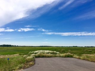 Main Photo: 90 50428 Range Road 234: Rural Leduc County Rural Land/Vacant Lot for sale : MLS®# E4074901