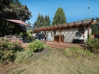 Photo 19: 4061 205A Street in Langley: Brookswood Langley House for sale : MLS®# R2196686