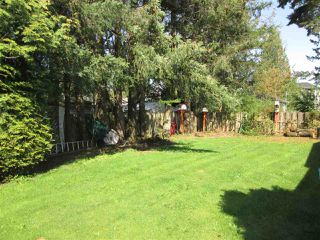 Photo 15: 2295 HOLLY Street in Abbotsford: Abbotsford West House for sale : MLS®# R2261945