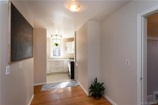 Photo 11: 1293 Denman Street in VICTORIA: Vi Fernwood Single Family Detached for sale (Victoria)  : MLS®# 392059