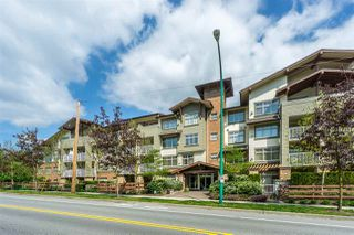 Photo 1: 403 6500 194 Street in Surrey: Clayton Condo for sale (Cloverdale)  : MLS®# R2275712
