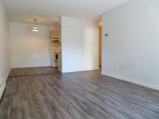 "Photo 5: 305 711 E 6TH Avenue in Vancouver: Mount Pleasant VE Condo for sale in ""PICASSO"" (Vancouver East)  : MLS®# R2278465"