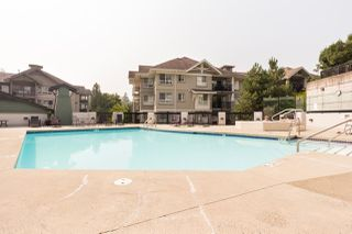 """Photo 16: 419 9098 HALSTON Court in Burnaby: Government Road Condo for sale in """"Sandlewood II"""" (Burnaby North)  : MLS®# R2298681"""