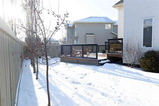 Photo 18: 1123 116 Street SW in Edmonton: Zone 55 House for sale : MLS®# E4135698