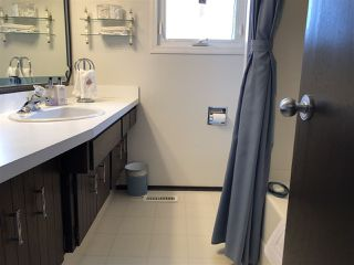 Photo 20: 155 Oak Drive: Wetaskiwin House for sale : MLS®# E4152071