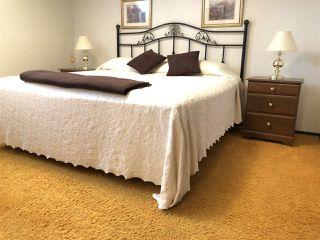 Photo 15: 155 Oak Drive: Wetaskiwin House for sale : MLS®# E4152071