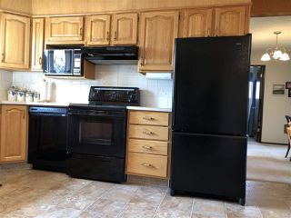 Photo 5: 155 Oak Drive: Wetaskiwin House for sale : MLS®# E4152071