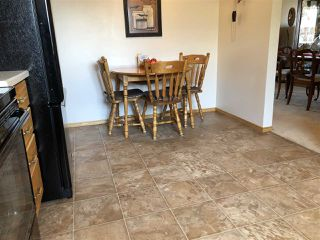 Photo 11: 155 Oak Drive: Wetaskiwin House for sale : MLS®# E4152071