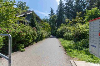 "Photo 18: 7049 208A Street in Langley: Willoughby Heights House for sale in ""Milner Heights"" : MLS®# R2370835"