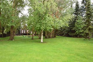 Photo 28: 26 MANOR VIEW Crescent: Rural Sturgeon County House for sale : MLS®# E4160630