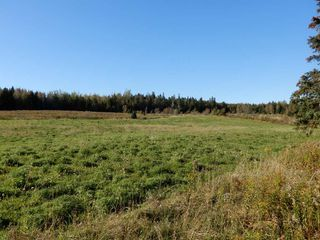Photo 22: 4815 Scotsburn Road in Scotsburn: 108-Rural Pictou County Farm for sale (Northern Region)  : MLS®# 201923231