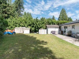 Photo 10: 4457 203 Street in Langley: Langley City House for sale : MLS®# R2481001
