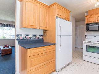 Photo 14: 4457 203 Street in Langley: Langley City House for sale : MLS®# R2481001