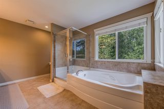 Photo 14: 10347 164A Street in Surrey: Fraser Heights House for sale (North Surrey)  : MLS®# R2499285