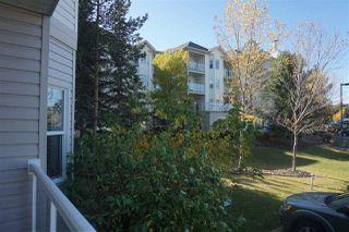 Photo 14: 121 14259 50 Street in Edmonton: Zone 02 Condo for sale : MLS®# E4216122