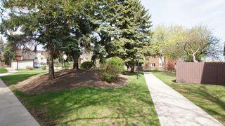 Photo 23: 208 740 Kenaston Boulevard in Winnipeg: River Heights / Tuxedo / Linden Woods Condominium for sale (West Winnipeg)  : MLS®# 1209014
