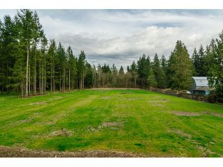 Photo 20: 2050 198TH Street in Langley: Brookswood Langley House for sale : MLS®# F1435854