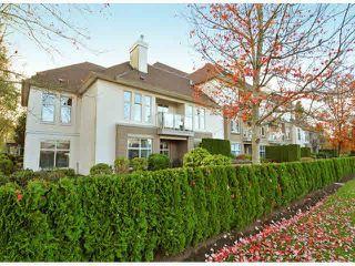 "Photo 1: 207 1929 154 Street in Surrey: King George Corridor Condo for sale in ""STRATFORD GARDENS"" (South Surrey White Rock)  : MLS®# R2001839"