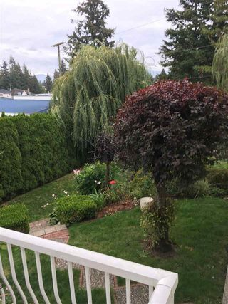 Photo 18: 2650 ALBERT Way in Abbotsford: Abbotsford West House for sale : MLS®# R2113348
