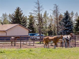 Photo 36: 354132 48 Street E: Rural Foothills M.D. House for sale : MLS®# C4096683