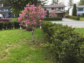 Photo 6: 3246 CHEHALIS Drive in Abbotsford: Abbotsford West House for sale : MLS®# R2161620