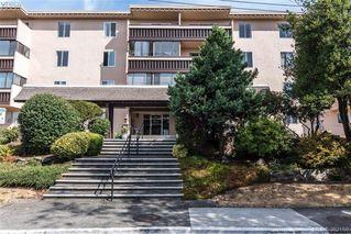 Photo 1: 302 1012 Pakington Street in VICTORIA: Vi Fairfield West Condo Apartment for sale (Victoria)  : MLS®# 382159