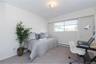 Photo 14: 302 1012 Pakington Street in VICTORIA: Vi Fairfield West Condo Apartment for sale (Victoria)  : MLS®# 382159