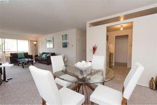 Photo 7: 302 1012 Pakington Street in VICTORIA: Vi Fairfield West Condo Apartment for sale (Victoria)  : MLS®# 382159