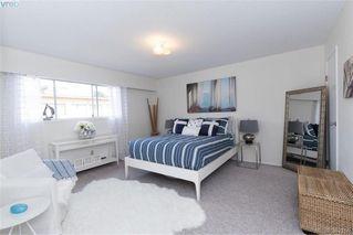 Photo 13: 302 1012 Pakington Street in VICTORIA: Vi Fairfield West Condo Apartment for sale (Victoria)  : MLS®# 382159