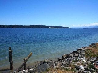 Photo 5: 5848 Island Hwy in UNION BAY: CV Union Bay/Fanny Bay Business for sale (Comox Valley)  : MLS®# 768006