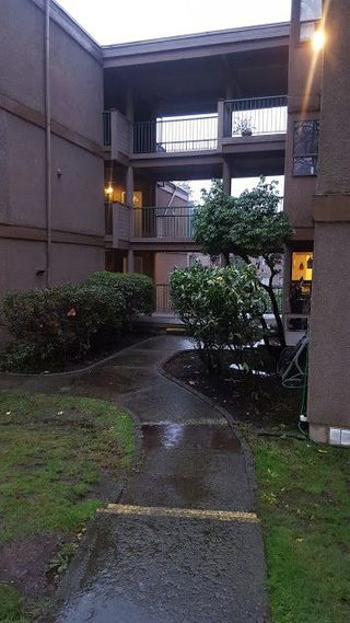 """Photo 4: 303 9146 SATURNA Drive in Burnaby: Simon Fraser Hills Condo for sale in """"MOUNTAIN WOOD"""" (Burnaby North)  : MLS®# R2230513"""