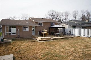 Photo 19: 281 Stradford Street in Winnipeg: Crestview Residential for sale (5H)  : MLS®# 1809791