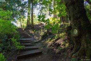 Photo 18: 2423 Driftwood Dr in SOOKE: Sk Sunriver Single Family Detached for sale (Sooke)  : MLS®# 797842