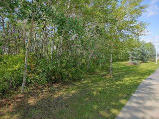 Photo 30: 451 HEFFERNAN Drive in Edmonton: Zone 14 House for sale : MLS®# E4137308