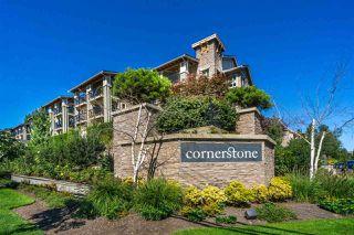 """Main Photo: 209 21009 56 Avenue in Langley: Salmon River Condo for sale in """"Cornerstone"""" : MLS®# R2338915"""