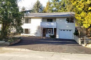 Photo 19: 32533 BEAVER Drive in Mission: Mission BC House for sale : MLS®# R2345762