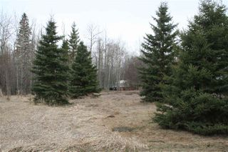 Photo 2: 51418B HGHWAY 60: Rural Parkland County House for sale : MLS®# E4153452