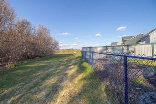 Photo 27: 4154 SAVARYN Drive in Edmonton: Zone 53 House for sale : MLS®# E4156211