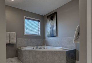 Photo 27: 3636 CHERRY Link in Edmonton: Zone 53 House for sale : MLS®# E4158769