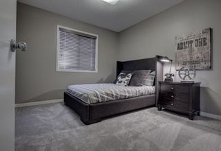 Photo 16: 3636 CHERRY Link in Edmonton: Zone 53 House for sale : MLS®# E4158769